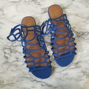 Royal blue gladiator sandals